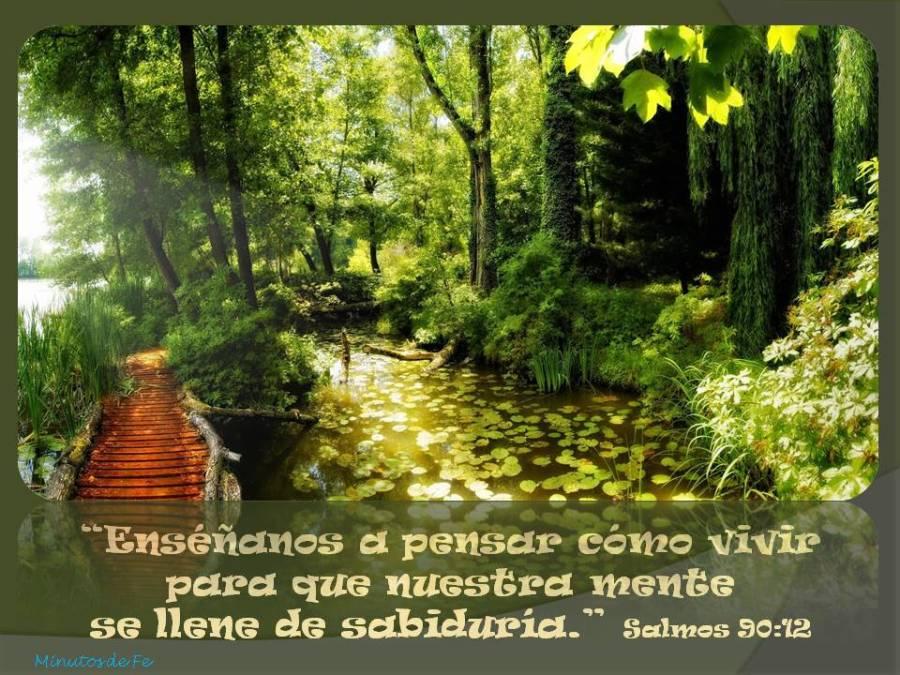 Salmo 90,12