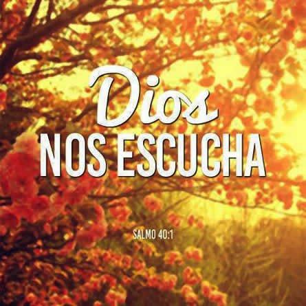 Dios nos escucha; así que pongamos hoy nuestras cargas, nuestras preocupaciones, nuestras alegrías sobre Él y agradezcamos por todo lo que nos da.!